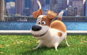 Peeking At 'The Secret Life Of Pets', See the Famous Voices Behind 'The Secret Life of Pets'