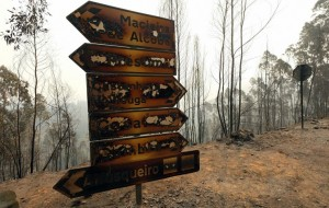 Portugal: Wildfires rage across Madeira Islands